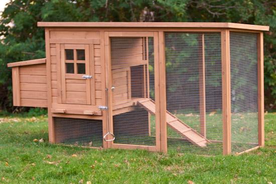 Backyard Chicken Coop Designs 1 diy chicken coop plans build your own chicken coop Budget Backyard Chicken Coops
