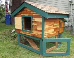 chicken coop12