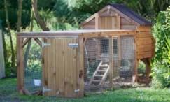 chicken coop17