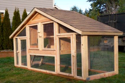 amazing chicken coops tbn ranch