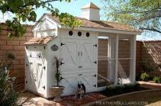 chicken coop30