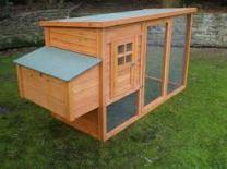 chicken coop5