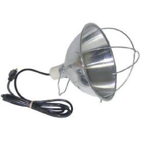 Brooder Lamp