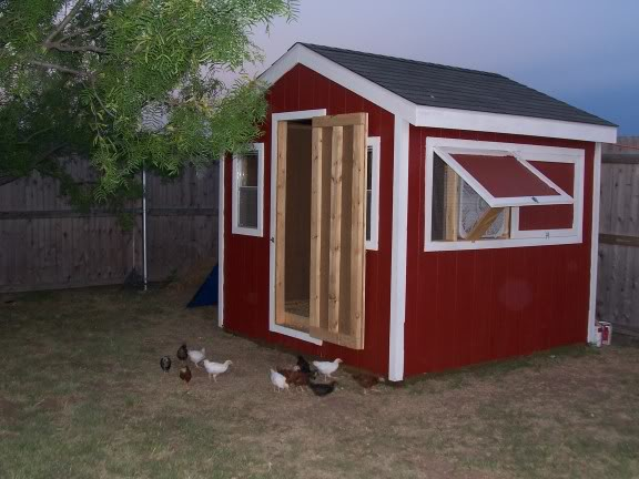 More Amazing Chicken Coops Tbn Ranch