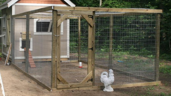 More amazing chicken coops tbn ranch for Chicken enclosure ideas