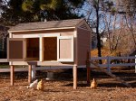 Tuff Shed Chicken Coop