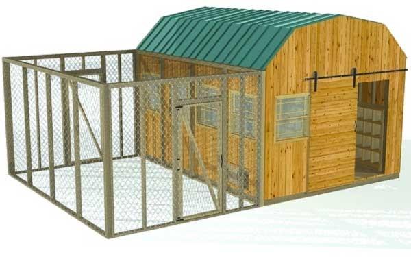 Build A Chicken Coop