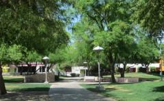 Scottsdale 005