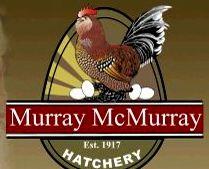 Murray McMurray