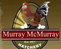 Murray McMurray