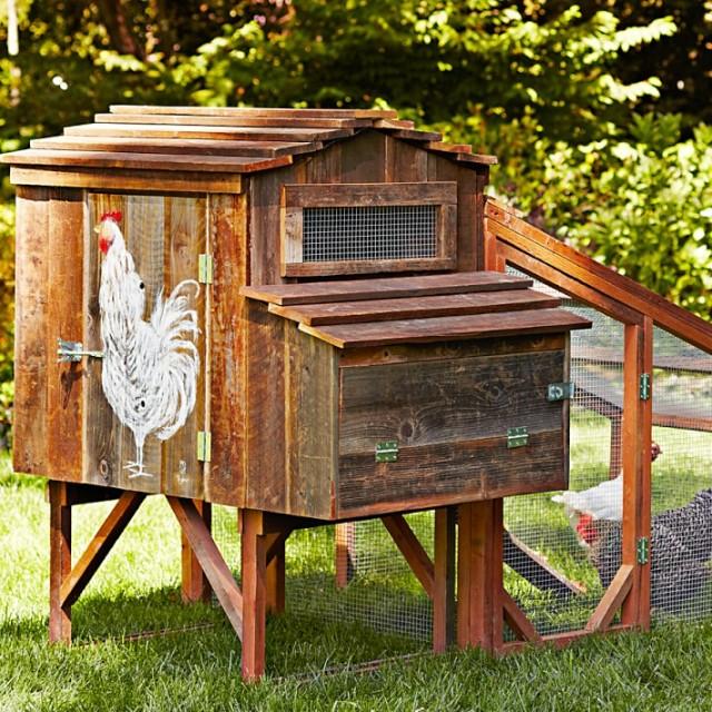 Cooplah Painted Chicken Coop Ideas