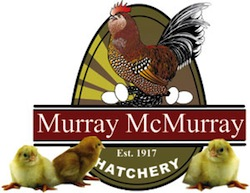 murray-mcmurray