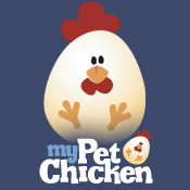 my pet chicken