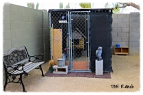 Chicken Coop 11-16-13