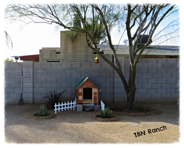Summer Hen House 1-19-14