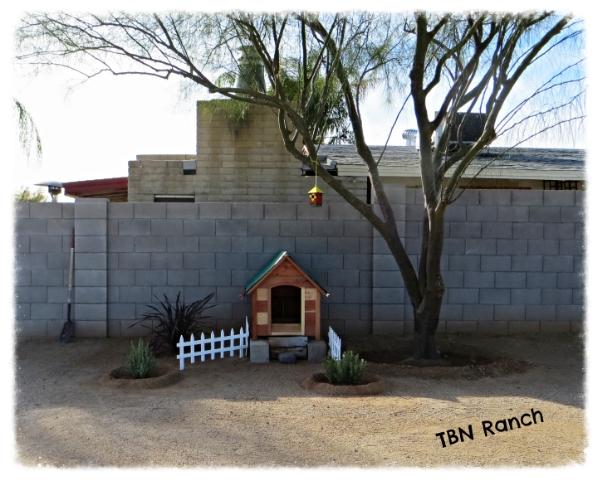 Summer Hen House 1-19-14