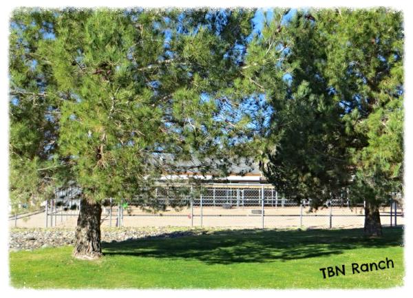 TBN Ranch 2-4-14
