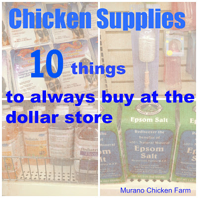 Chicken supplies collage
