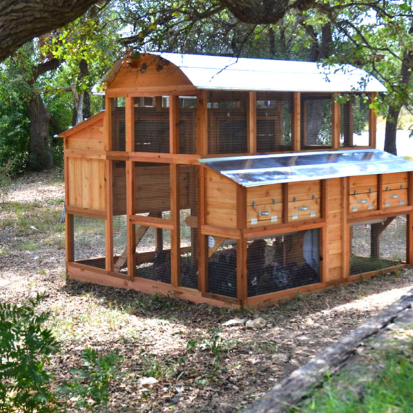 chicken coop kits for 12 chickens need easy recipe for