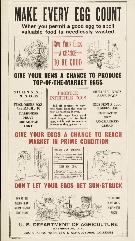 government-egg-poster-576x1024