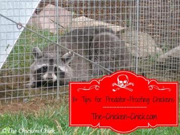 Predator Proofing