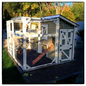 chicken-coop-photo-by-dana-hursey