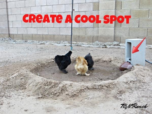 Create a cool spot