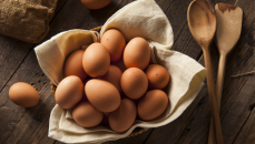 10-Breeds-of-Chicken-That-Will-Lay-Lots-of-Eggs-for-You-Blog-Cover