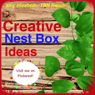Creative Nest Box Ideas