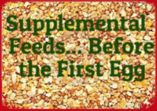 Supplement Feeds 2