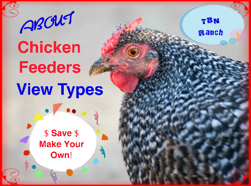 Chicken Feeders