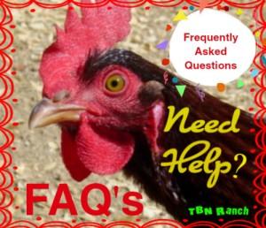 FAQ's 8