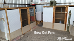 Grow Out Pens 102015