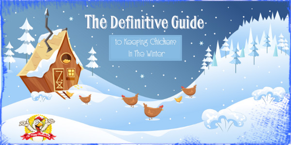 Definative Guide