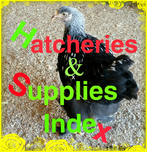 Hathceries & Supplies Cover