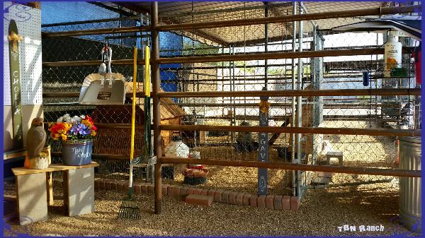 Chicken Coop 6616