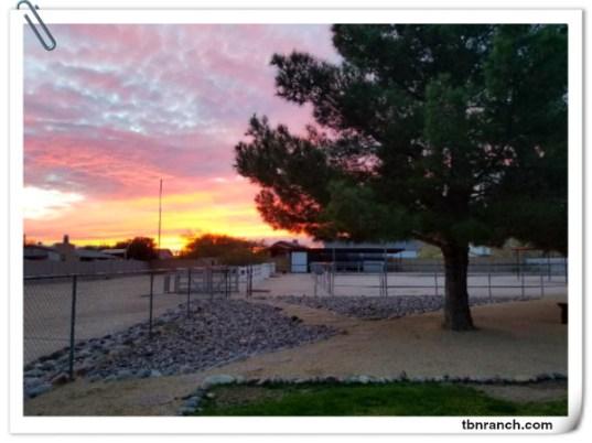 TBN Ranch 22018