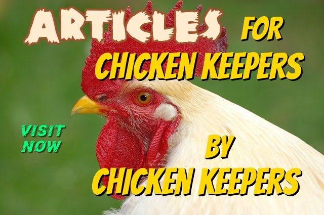 Articles for Chicken Keepers